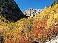 Mount Timpanogos Trail - panoramio (1).jpg