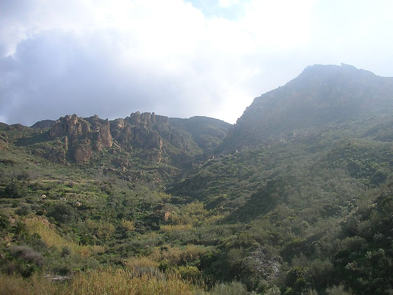 https://upload.wikimedia.org/wikipedia/commons/thumb/2/2d/Mountains_in_Almeria.jpg/800px-Mountains_in_Almeria.jpg