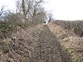Muddy track-footpath - geograph.org.uk - 1710756.jpg