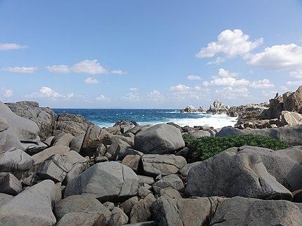 徳之島のムシロ瀬、鹿児島県、日本