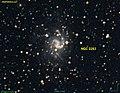 NGC 2283.jpg