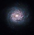 NGC 3982 galaxy hubble.jpg