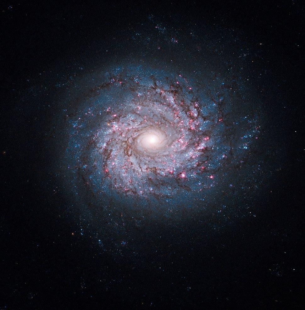 NGC 3982 galaxy hubble