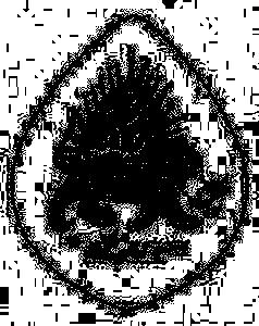 Nader Shah Afshar's signature