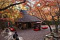 Nara Mizutani-tyaya01ds3872.jpg