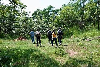 Narsapur, Medak district - Narsapur Trekking Picture