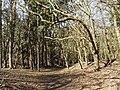 Nationaal Park Kennemerland (40657097154).jpg
