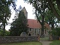 Naturdenkmal Esche an der Kirche Groß Ziescht 2019-08-04 (14).jpg