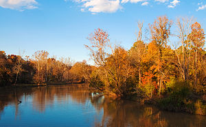 Wake County, North Carolina - Neuse River in Wake County, NC