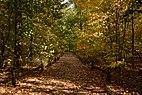 New York Botanical Garden October 2016 006.jpg