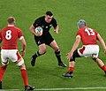 New Zealand national rugby 20191101b16.jpg