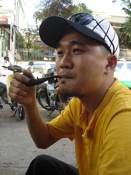 File:Nghệ sỹ Lê Quý Anh Hào.jpg