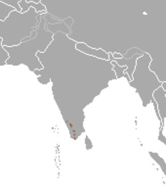 Nilgiri marten - Image: Nilgiri Marten area