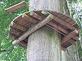 Non invasive method of fixing a tree platform.JPG