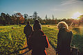 Nonsuch Park - walking on a sunny winter's day.jpg