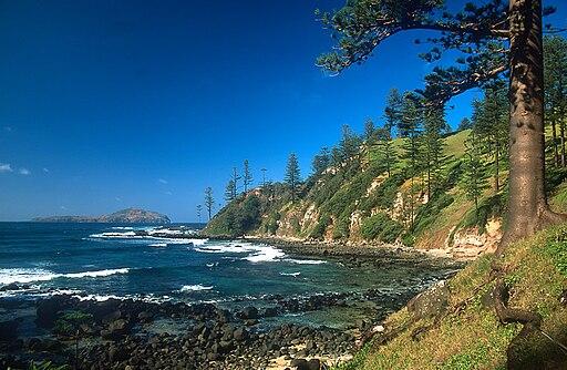 Norfolk Island Bomboras