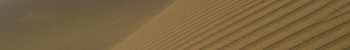Northern Africa banner Wind ripples on a large dune.jpg