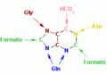 Nucleotides syn3.png