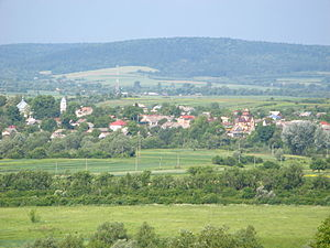Nyzhankovychi (view of the central part of the town).JPG