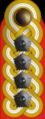 OF-10 Armeegeneral.png