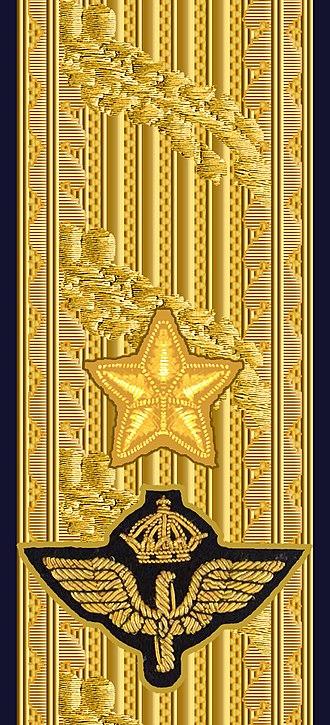 Brigadier general - Image: OF 6 Brigadgeneral FV hylsa