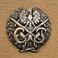 Odznaka CWPA.jpg