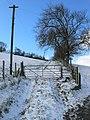 Offa's Dyke Path - geograph.org.uk - 756842.jpg