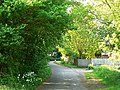 Old Roman road, near Covingham, Swindon - geograph.org.uk - 799853.jpg
