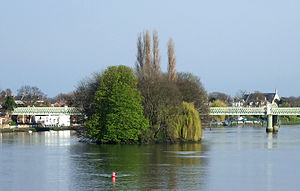 Islands in the River Thames - Oliver's Island looking downstream