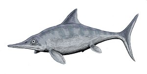Ophthalmosaurus - Restoration