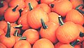 Orange Halloween pumpkins (Unsplash).jpg