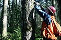Oregon BLM Forestry 04 (6871715383).jpg