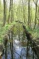 Oud-Turnhout Oud-Turnhout De Liereman fase 1 Lieremansloop - 208929 - onroerenderfgoed.jpg