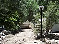 Outdoor solar lighting of a trail.jpg