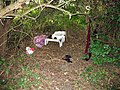 Overnight Accommodation - geograph.org.uk - 217376.jpg