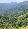 Pakshipathalam - views from the way to Pakshipathalam from Thirunelli (51).jpg