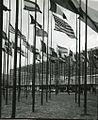 Paolo Monti - Servizio fotografico (Torino, 1961) - BEIC 6346850.jpg
