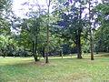 Park in Klimkówka bk08.JPG