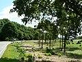 Parkplatz Stauferburg - geo.hlipp.de - 2299.jpg
