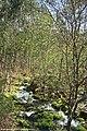 Parque Bioparque - Parque Florestal do Pisão - Portugal do Pisão 31L-1 (32938338675).jpg