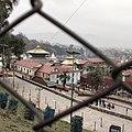 Pashupatinath.... Cultural heritage of nepal.jpg