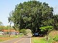 Passagem da Usina Hidrelétrica de Bariri na rodovia SP-251. A usina nomeada de UHE Ministro Álvaro de Souza Lima possui 856 metros de comprimento e foi construída em concreto e terra. A usina d - panoramio (1).jpg