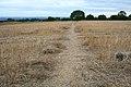 Path to Risley Lodge Farm - geograph.org.uk - 917149.jpg
