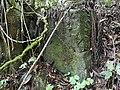 Pedra dos cipós.jpg