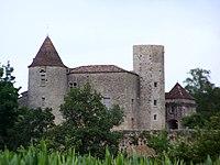 Pellegrue Château du Puch de Gensac 01.jpg
