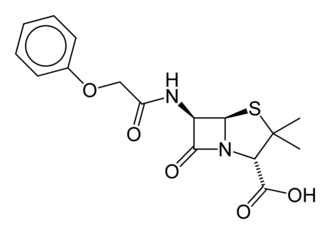 John C. Sheehan - Structure of Penicillin V