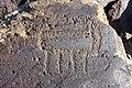 Petroglyphs from Ukhtasar 15092019 (26).jpg