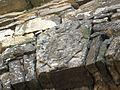 Pezzolo Valle Uzzone. Gorrino Stemma dei Marchesi Ponzone sulla Porta Fredda.jpg