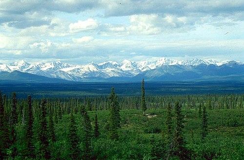 Tundra Essays 1 - 30 Anti Essays