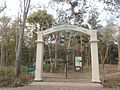 Picher 14 Satchari National Park.jpg